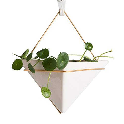 RUNI MO Hängende Pflanzer Vase & geometrische Wand Dekor Container - Wand hängen grünen Blumentopf - für Sukkulenten, Mini Kaktus, Faux Pflanzen - Moderne Home Decor 9,25 * 7,87 * 4,72