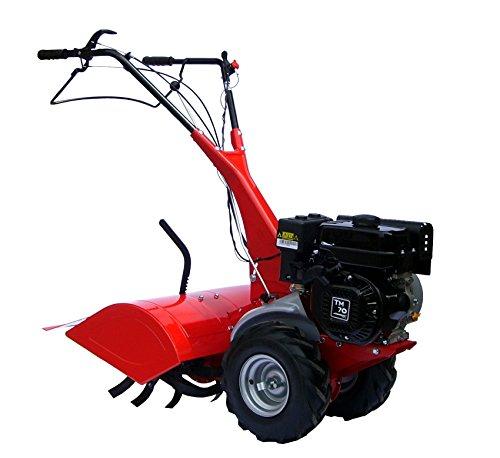 Eurosystems MC 67TM 70Vertikutierer Benzin Motorhacke Gartenfräse Motor Verbrennungsmotor Benzin