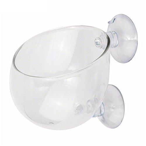 Gorgebuy Wasserpflanze Glasbecher Glasvase Topf Pot mit Saugnapf Für Aquarium Aquaaping Fisch Tank Halter