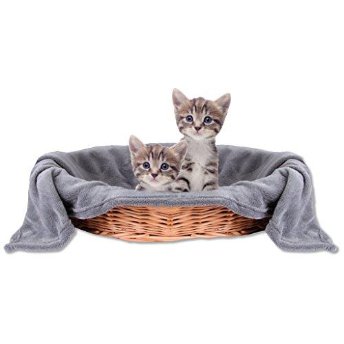 Bestlivings Haustierdecke Katzendecke Kuscheldecke Tierdecke, Angenehm und Super Weich in Vielen Verschiedenen Farben erhältlich (80x120 cm/Steingrau - Anthrazit)
