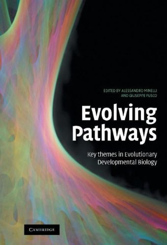 Evolving Pathways: Key Themes in Evolutionary Developmental Biology 1st Edition by Fusco, Giuseppe (2008) Hardcover