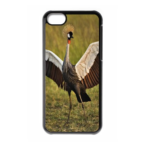 iPhone 5C Phone Case Red-crowned Crane CI795519