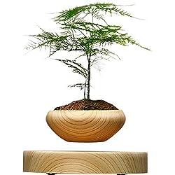sportuli Planta de Maceta Flotante Magnético suspendido Hippie Redondo LED Levitando el Interior Zen Pot