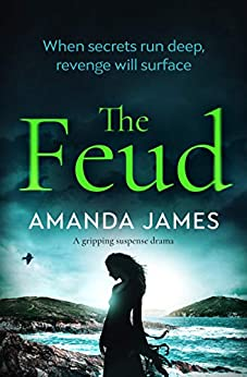 The Feud: a gripping suspense drama by [James, Amanda]