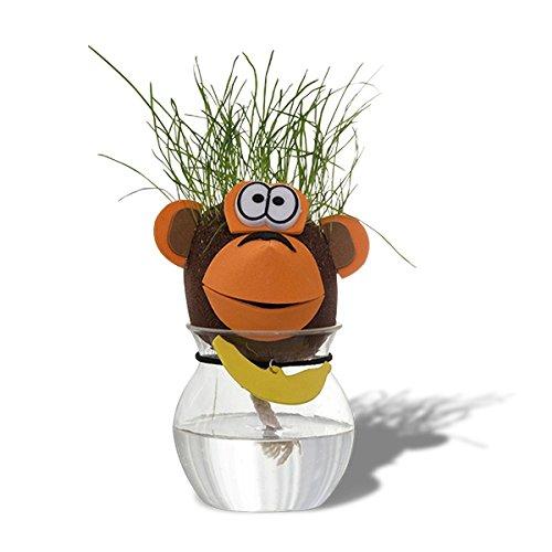 Cabeza de animal de pelo de hierba que crece Perro