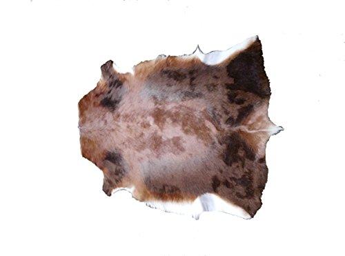 Zerimar Alfombra piel de blesbok africano Medidas: 105x80 cms 100% Natural Calidad garantizada