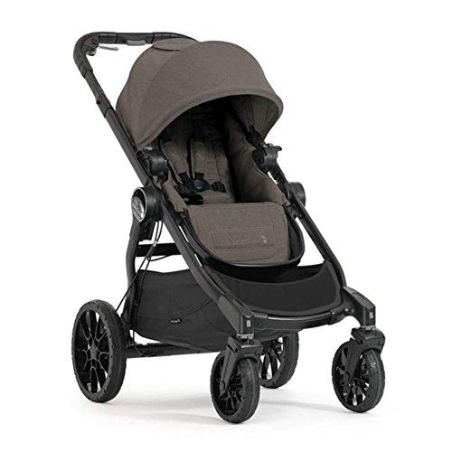 Baby Jogger bj2012219 evolutionären – Kinderwagen