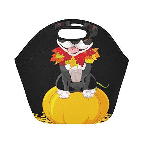 Isolierte Neopren-Lunchpaket Boston Terrier sitzt auf Kürbis große wiederverwendbare thermische starke Mittagessen-Tragetaschen für Lunch-Boxen für im Freien arbeiten, Büro, Schule (Terrier Halloween-kostüm Boston)