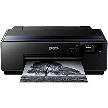 Epson SC-P600 A3 Impresora de Inyección de Tinta, Ya disponible en ...