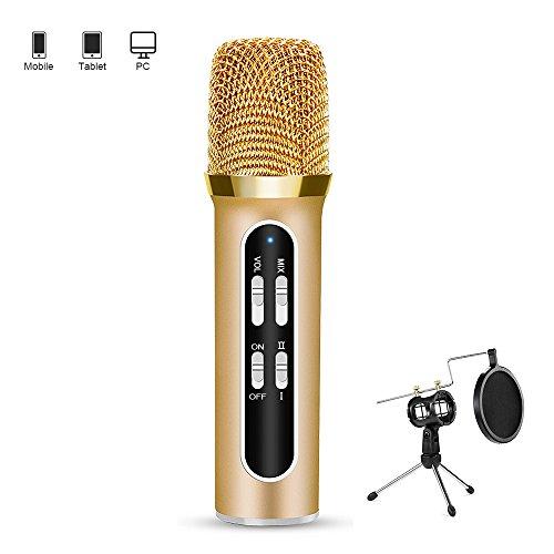xioakoa-microphone-audio-professionnel-microphone-dancrage-avec-reverberation-daccord-multifonction-