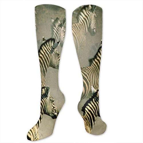 Jxrodekz Zebras Running Polyester Cotton Over Knee Leg High Socken Printed Unisex Thigh Stockings Cosplay Boot Long Tube Socken for Sports Gym Yoga Hiking Cycling Running Soccer