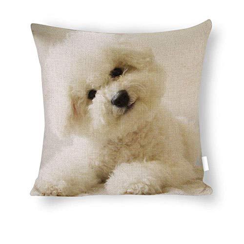 Mesllings Lovely_White_Bichon Frise_Puppies_Pet_Animal Kissenbezug, dekorative Baumwolle und Leinen, mit unsichtbarem Reißverschluss, Design Home Decor 40,6 x 40,6 cm