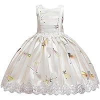 bebés Vestido de Tul | Niño niño niña sin Mangas Bordado Princesa Vestido de Fiesta Vestido Cosplay Ropa 2-12 años