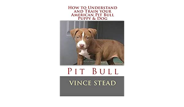 How to Understand and Train your American Pit Bull Puppy & Dog