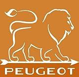 Peugeot Set Pfeffermühle + Salzmühle Daman uselect 21 cm - 4