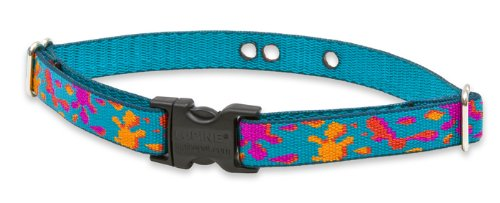 lupine-3-4-zoll-wet-paint-12-43-cm-eindammung-halsband-gurt-fur-kleine-bis-mittelgrosse-hunde