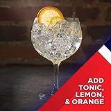 Beefeater London Dry Gin – Der meistausgezeichnete Gin der Welt – Klassisch frischer Gin mit vielschichtigem Charakter – Perfekte harmonische Basis für vielseitige Geschmackskombinationen – 1 x 1 L - 7