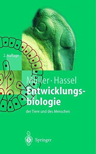 Entwicklungsbiologie der Tiere und des Menschen: Einführendes Lehrbuch der Embryologie, Entwicklungsgenetik und Entwicklungsphysiologie (Springer-Lehrbuch)