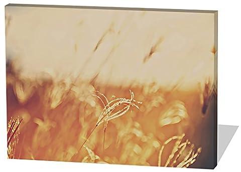 Auf dem Feld, Gemälde Effekt, schönes und hochwertiges Leinwandbild zum Aufhängen in XXL - 60cm x 40cm, echter Holzrahmen, effektiver Pigmentdruck, modernes Design für Ihr Büro oder (Feld 48 Tor)