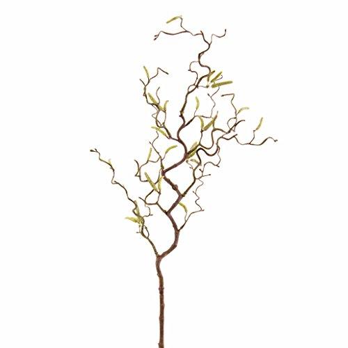Ramo di nocciolo artificiale con 20 amenti, 65 cm - Nocciolo decorativo / Ramo ornamentale - artplants