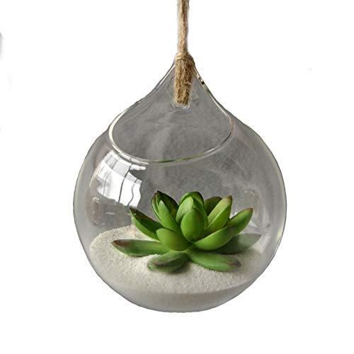 Cupcinu Aufhängen Glas Globe Pflanzen Terrarium Teelichthalter Blumen Vase Kugel Air Blumentopf Container Succulents Kaktus Moos Miniatur Garten für Home Garten Decor (Durchmesser 10cm) (Krug Teal)