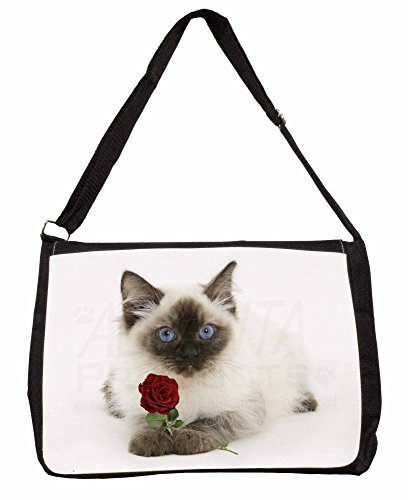 Ragdoll Kitten Cat with Red Rose Large 16