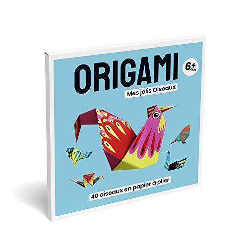 Origami, Jeux educatif, Activité Manuelle Enfant & Adulte, Loisir Créatif de Pliage Papier Facile...