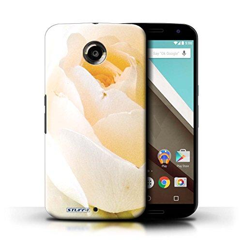 iCHOOSE Hülle / Hülle für iPhone 6+/Plus 5.5 / harter Plastikfall für Telefon / Collection Blumengarten Blumen / Sonnenblumen Zarte Rose