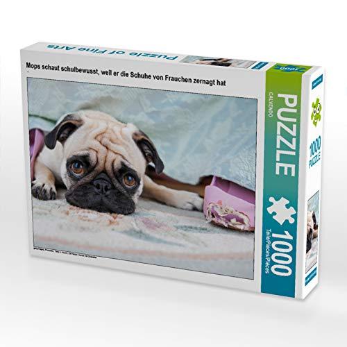CALVENDO Puzzle Mops schaut schulbewusst, Weil er die Schuhe von Frauchen zernagt hat 1000 Teile Lege-Größe 64 x 48 cm Foto-Puzzle Bild - Mops-fotos