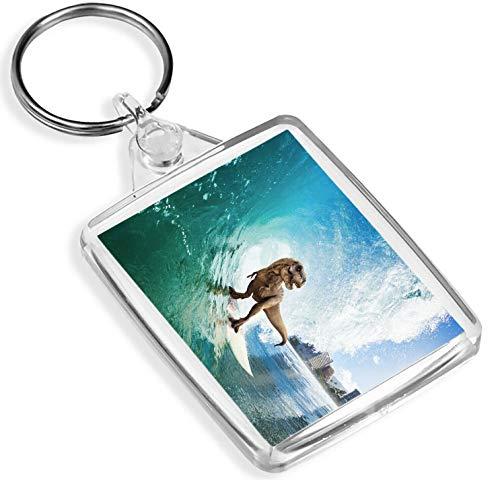 Lustige Surfen Dinosaurier Schlüsselanhänger T-Rex Rex Surf Surfer-Witz Schlüsselanhänger Gift # 13154