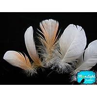 Plumas, plumas de cacatúa–pequeño–de plumas de blanco y melocotón cacatúa cuerpo 6piezas