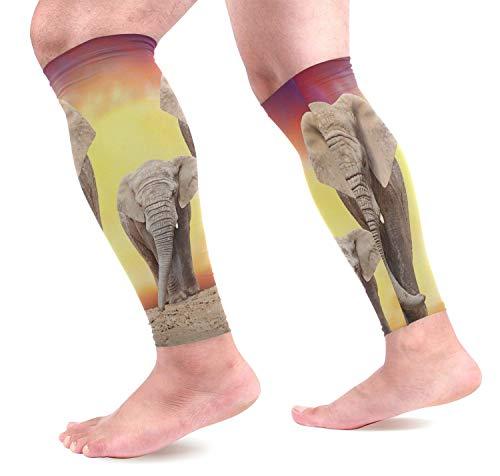 Bgejkos Familia de Elefantes africanos Mangas de compresión para pantorrillas Protectores de...