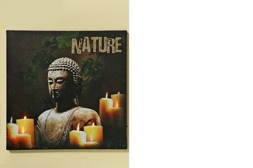 ddha Nature