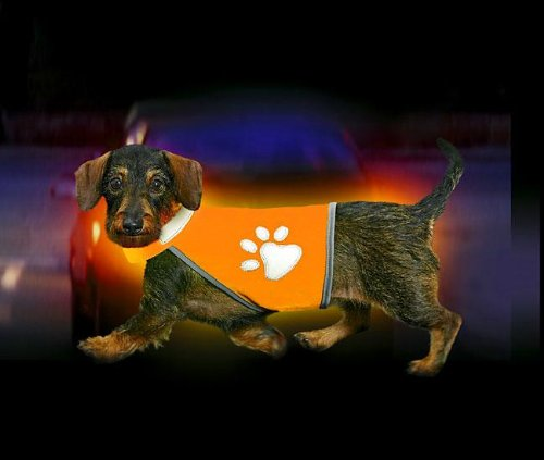Artikelbild: Karlie SAFETY-DOG Sicherheitsweste - Orange, fr Hunde