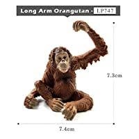 Yoin Sloth Orangutan Chimpanzee gibbon Monkey Animal model figurine home decor miniature fairy garden decoration accessories statue,Long Arm Orangutan