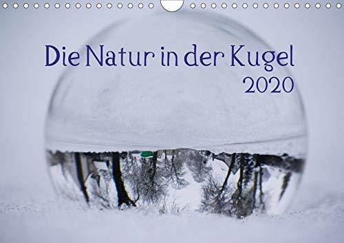 Die Natur in der Kugel (Wandkalender 2020 DIN A4 quer): Die Natur im Blick durch die Glaskugel (Monatskalender, 14 Seiten ) (CALVENDO Natur)