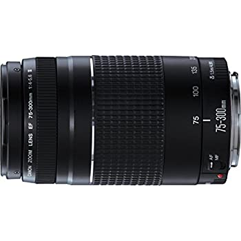 Canon EF 75-300mm/1:4,0-5,6 III - Objetivo para Canon (distancia focal 75-300mm)