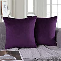 Ashler Pack of 2 Soft Velvet Decorative Throw Pillow Cushion Cover Sets 20 X 20 inch Purple Velvet Decorative Throw Pillow -28