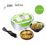 Split Type Lunch Box Elettrico Cibo Termico Sacco Per Il Pranzo Multifunzione Lunch Box Bento 12v / 110V / 220v (colore : Verde, dimensioni : 220V)