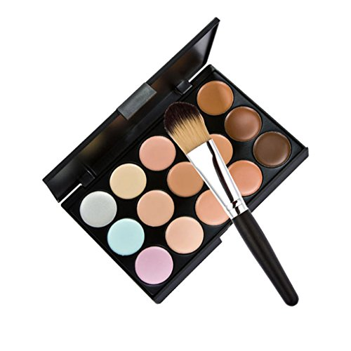 Pro 15 Couleurs Crème Pour Le Visage De Contour Maquillage Anticernes Palette + Houppette Brosse