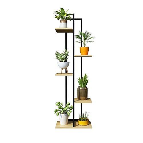 Plantes Niveaux Achat Vente De Plantes Pas Cher