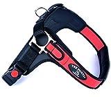 TRE Ponti Geschirr Forza mit Schwarzen Rand Rot 100-120 cm bis ca. 40-60 kg