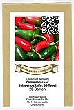 Mittelscharfes Chili zum Grillen, Füllen, Braten - Chili Jalapeno - 20 Samen