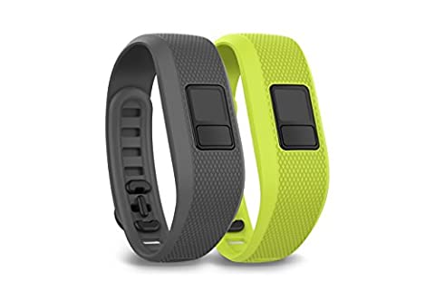 Garmin Vivofit 3 Bracelet pour Smartphone/Tablette Gris requin/Vert aurore boréale