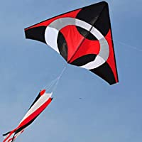 FZSWD Llega 2M Power Frisbee Kite/Resin Rod Windsocks Tail with Flying Tools