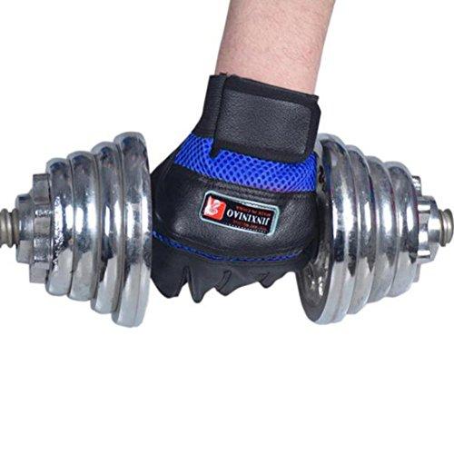 HCFKJ Gym Body Building Trainingshandschuhe Sport Gewichtheben Training Übung (blau)