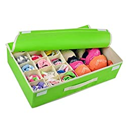 Storage Box - Multi Compartment 15 + 1 Cells Dustproof Drawer Dividers Closet Organizers / Storage Box / Non - Smell Drawer Organizer For Sock Bra Underwear Scarf Tie Storage Box with Cover By KARP - Green Color
