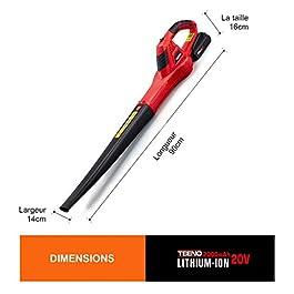 TEENO Souffleur de feuilles sans Fil 20V 2.0Ah,Vitesse 13000 tr/min, durée de fonctionnement 18 min – Batterie et charger inclus