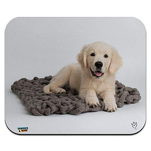 Golden retriever-Hündchen-knorrige Decke Low Profile Thin Mouse Pad Mousepad -