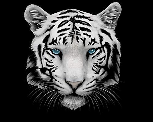 YKCKSD 1000 Teile Puzzles Rätsel Für Erwachsene Weißer Tiger Und Blaue Augen Dekoration Für Das Heimenspiel Geschenk Lernspielzeug Für Kinder Und Erwachsene -